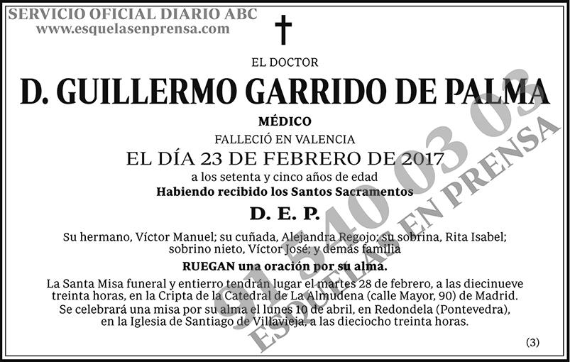 Guillermo Garrido de Palma